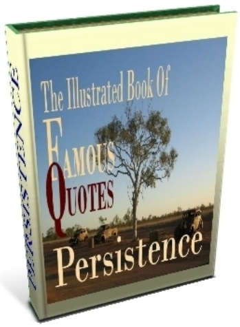 Persistence book cover